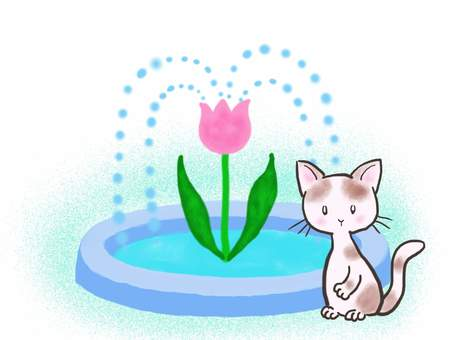 Fountain cat 4