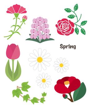 Spring flowers summary