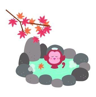 A monkey taking a bath