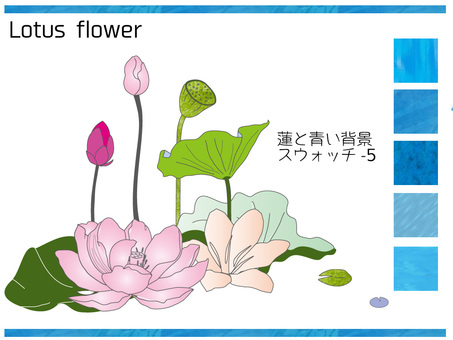 5 lotus flowers and blue background swatches
