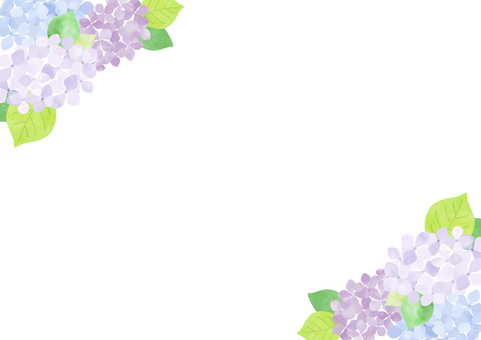 Hydrangea background 1