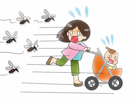 Mosquito ~~~!