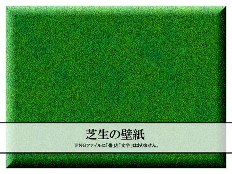 Lawn Green Wallpaper Garden Background Gardening