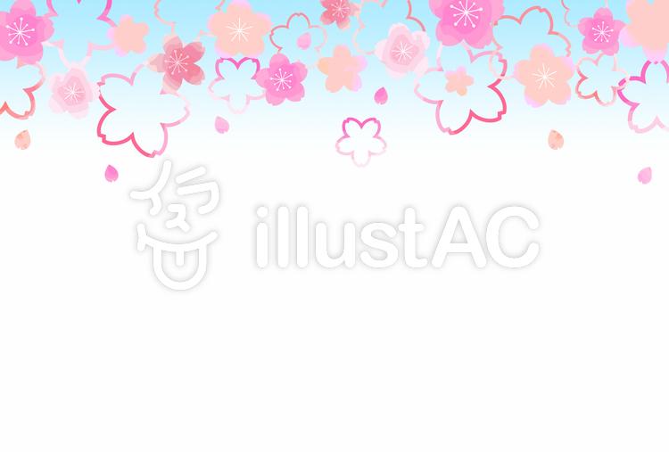 桜背景06のイラスト