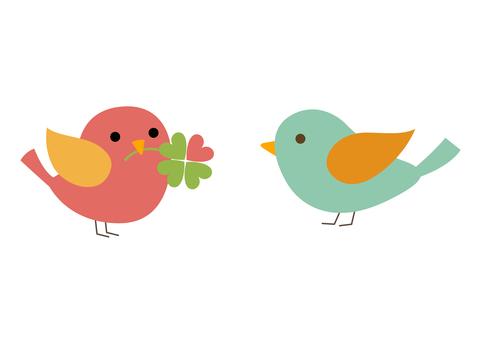 클로버와 작은 새 13