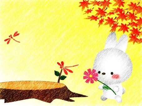 Usagi and autumn cherry blossoms