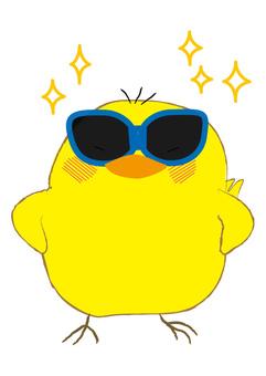 Piyo sunglasses