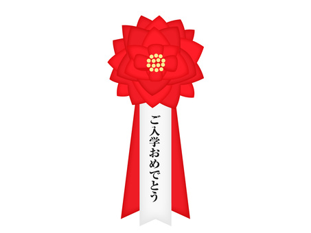 Ribbon insignia (enrollment)