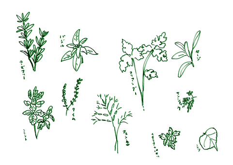食用草藥10種+手寫名稱