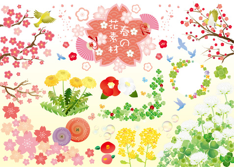 Spring flower material collection