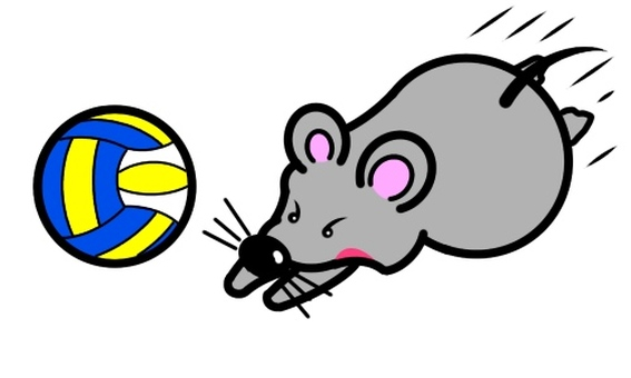 Volleyball of mice