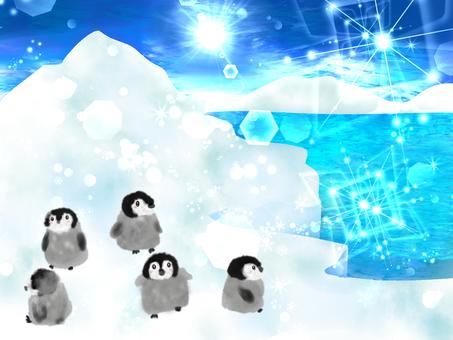 남극 펭귄 2