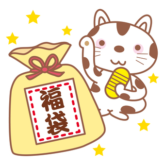 Lucky bag and cat
