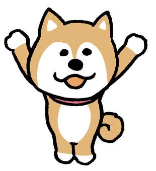 Dog Banzai