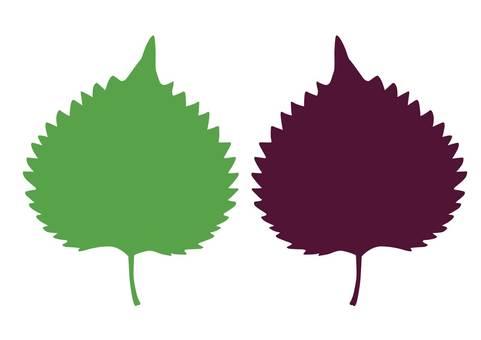 Green Perilla · Red Perilla