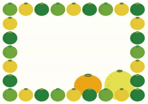 citron_ citrus 3