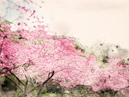 [Watercolor] Cherry blossom trees