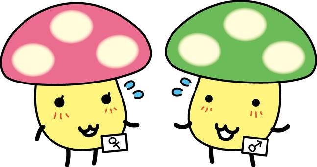 A marriage mushroom leaving a conversation