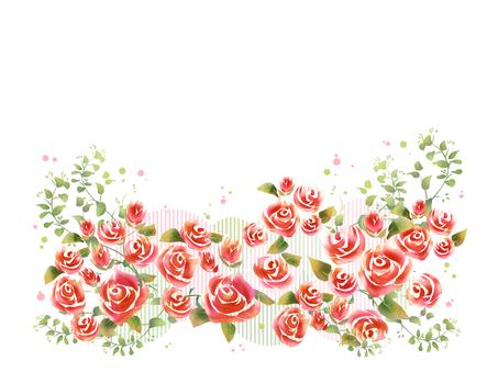 薔薇 08