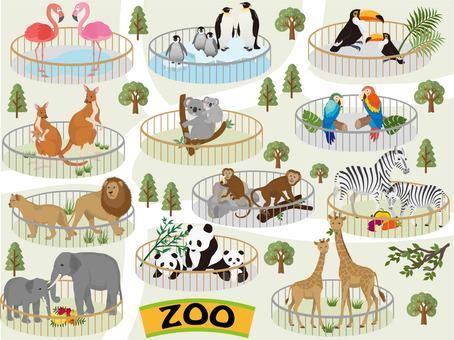 With zoo oli