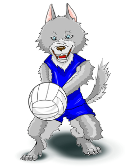 Volleyball Wolf 2