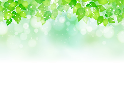 Fresh green 267