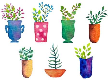 식물 냄비