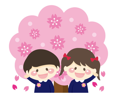 Cherry blossoms and cherry blossoms