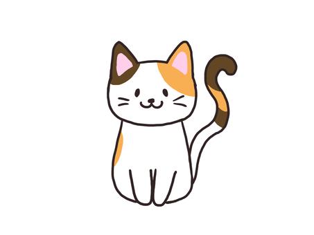 삼색 털 고양이