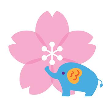 櫻花和大象