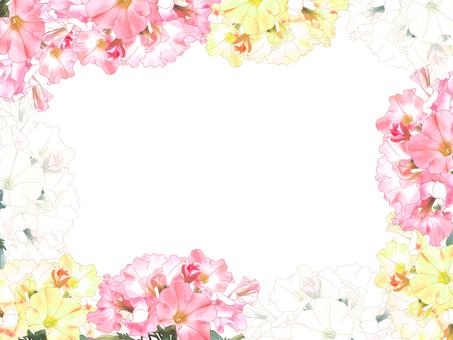 Petunia's frame