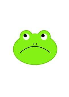 개구리의 얼굴