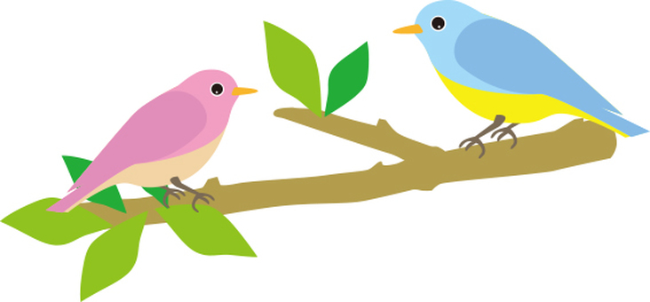 Two birds and branches