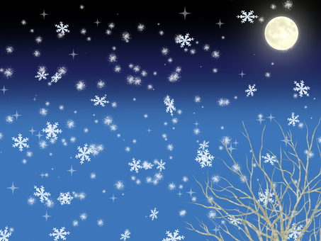Snowing Night