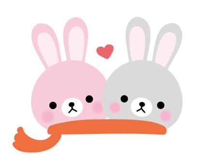 A rabbit friend