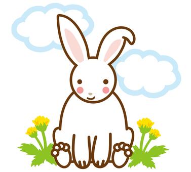 민들레와 토끼