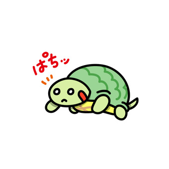 Turtle to wake up