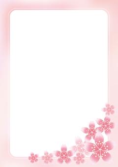 Sakura Sakura & Board 18