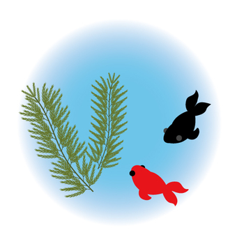 Image of water plants and goldfish