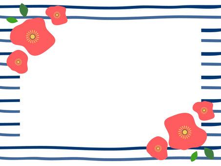 꽃과 국경