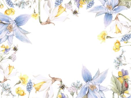 藍色鐵線蓮花框架