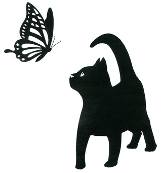Kitten and butterfly