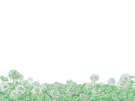 토끼풀 3