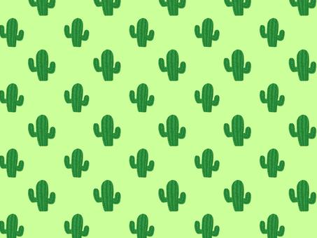 Cactus wallpaper green