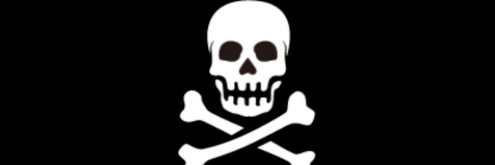 Twitter header skull