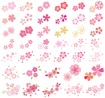 One point set of cherry blossoms