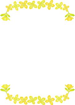 Dish の flower Ⅳ