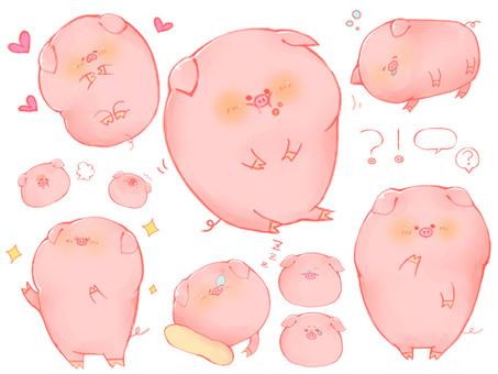귀여운 돼지 씨