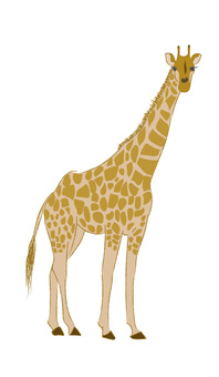 Rough giraffe