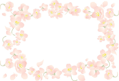 A frame with five cherry blossoms